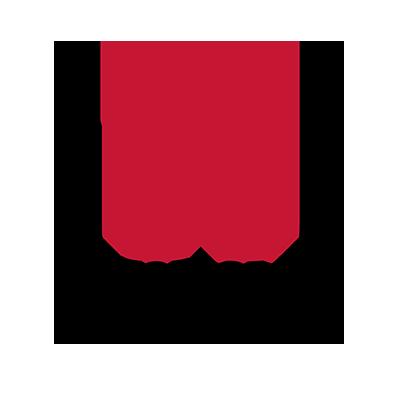 storage_virtulazation_transparent